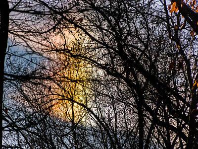 Photograph - Cloud Iridescence by Robin Zygelman
