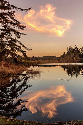 Photograph - Cloud On Cranberry Lake by Tony Locke