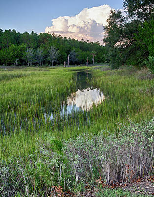 Photograph - Cloud Over Marsh by Patricia Schaefer