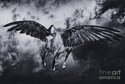Wall Art - Photograph - Cloud Pegasus by Kent Miklenda