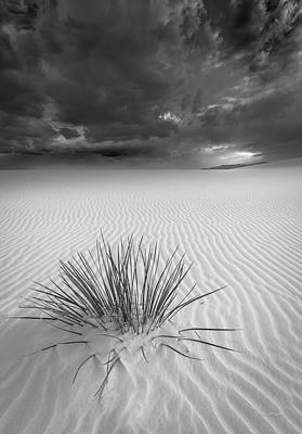 Photograph - Cloud Surge Over White Sands by Tim Bryan