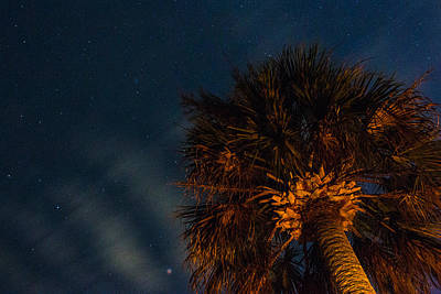 Photograph - Cloud Waves Over A Palm by Brent L Ander