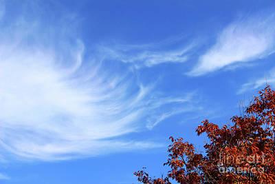 Photograph - Cloud Whispers by Karen Adams