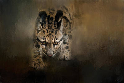 Photograph - Clouded Leopard On The Hunt - Painting by Jai Johnson