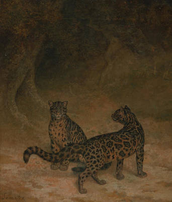 Painting - Clouded Leopards by Treasury Classics Art