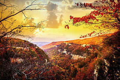 Photograph - Cloudland Canyon Overlook by Debra and Dave Vanderlaan