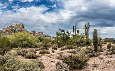 Clouds And Cacti Art Print
