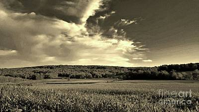 Food And Flowers Still Life - Clouds and Cornfields by Dani McEvoy