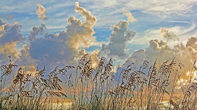 Photograph - Clouds And Seaoats by HH Photography of Florida