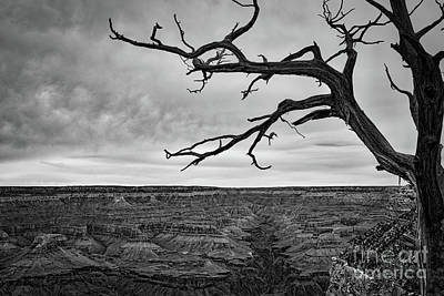 Gnarly Photograph - Clouds And The Canyon by Ana V Ramirez