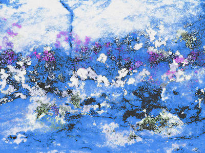 Photograph - Clouds And Blossom by Stephanie Grant