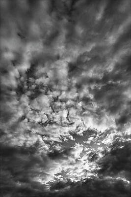 Animal Surreal - Clouds at Sunset by Robert Ullmann