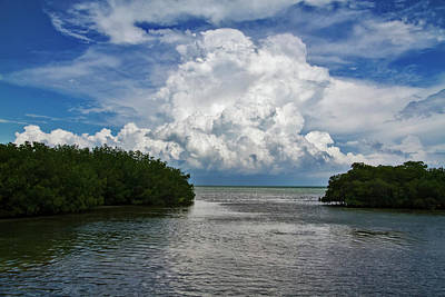 Photograph - Clouds Between The Mangroves by Bob Slitzan