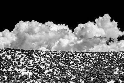 Pinion Photograph - Clouds By Design by Roselynne Broussard