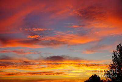 Photograph - Clouds On Fire by Jennifer White