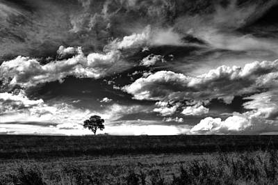 Photograph - Clouds On The Prairie - Black And White Photography by Ann Powell