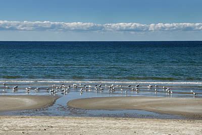 Photograph - Clouds Over Lake Ontario Athol Bay With Seagulls On Outlet Beach by Reimar Gaertner