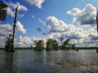 Photograph - Clouds Over The Louisiana Bayou by Mary Capriole