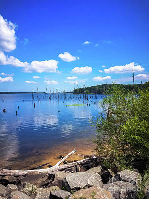 Photograph - Clouds Over The Manasquan Reservoir  by Colleen Kammerer