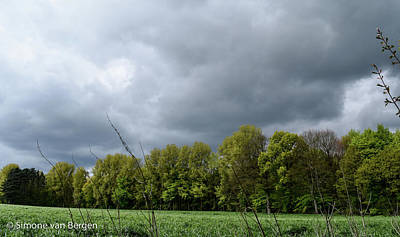 Photograph - Clouds Over Trees by Simone Van Bergen