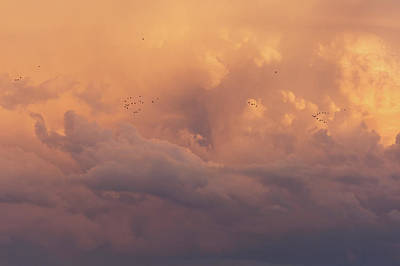 Photograph - Cloudscape by Dustin LeFevre