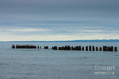 Photograph - Cloudy At Whitefish Bay by Jennifer White