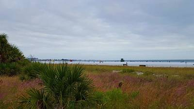 Gulf Of Mexico Photograph - Cloudy Beach by Ric Schafer