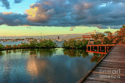 Photograph - Cloudy Evening View by Tom Claud