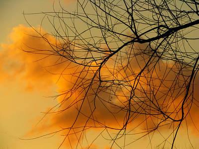 Cloudy Silhouette Art Print by Dottie Dees