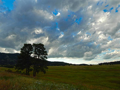 Photograph - Cloudy Skies Over The Meadow by Dan Miller