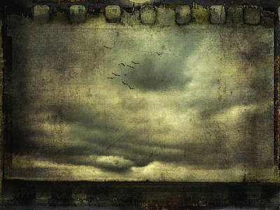 Photograph - Cloudy Sky And A Flock Of Birds by Siegfried Ferlin