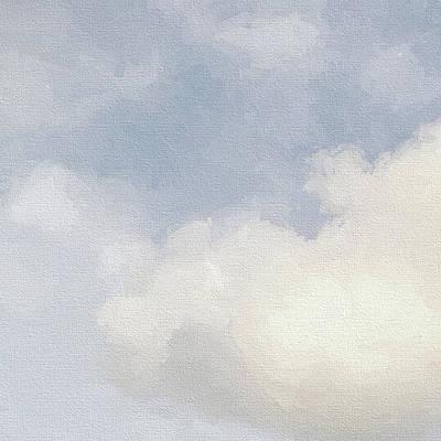 Photograph - Cloudy Skies by Karen Lynch