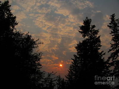 Photograph - Cloudy Sunset by Leone Lund