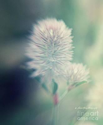 Photograph - Clover by Janice Spivey