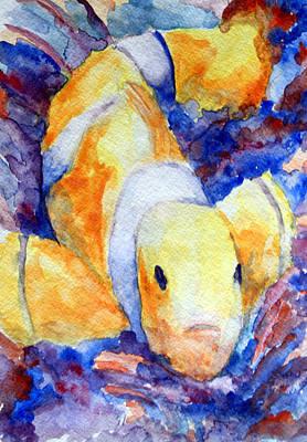 Clown Fish Art Print by Mike Segura