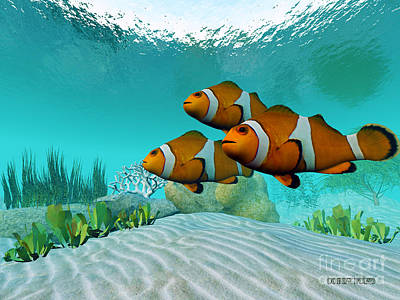 Clownfish Painting - Clownfish by Corey Ford