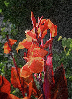 Photograph - Clump Of Cannas by Nareeta Martin