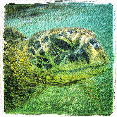 Painting - Clyde The Turtle by Erika Swartzkopf