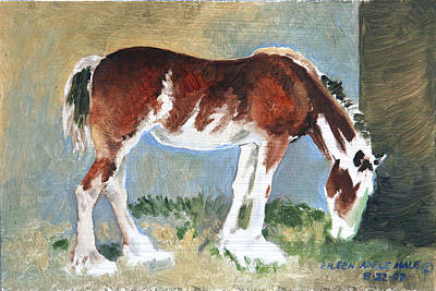 Painting - Clydesdale Colt Pad by Eileen Hale