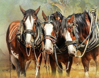Digital Art -  Clydesdale Conversation by Trudi Simmonds