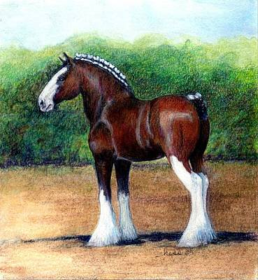 Clydesdale Drawing - Clydesdale Horse Portrait by Olde Time  Mercantile