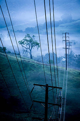 Photograph - Co-existence In The Santa Monica Mountains by Joe Doherty