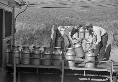 Milk Can Photograph - Co-op Dairy Milk Process by Jack Delano