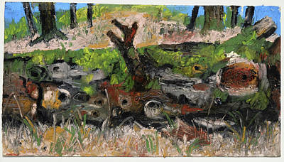 Painting - Coarse Woody Debris,plein Air Oil by Martin Stankewitz