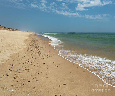 Photograph - Coast Guard Beach Cape Cod by Michelle Constantine