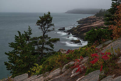 Photograph - Coast Of Acadia by Gary Lengyel