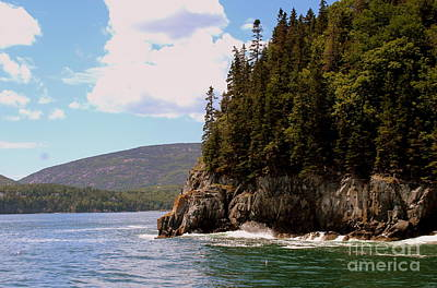 Photograph - Coast Of Acadia  by Lennie Malvone