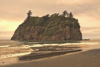 Photograph - Coast Of La Push Washington by Dan Sproul