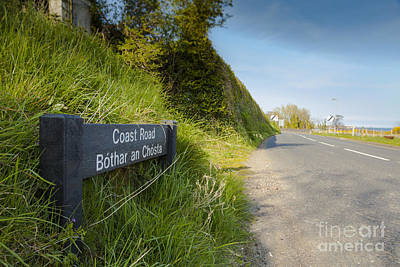 Photograph - Coast Road by Jim Orr