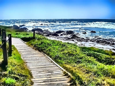 Coast Trail At Pebble Beach Art Print by Kathy Tarochione